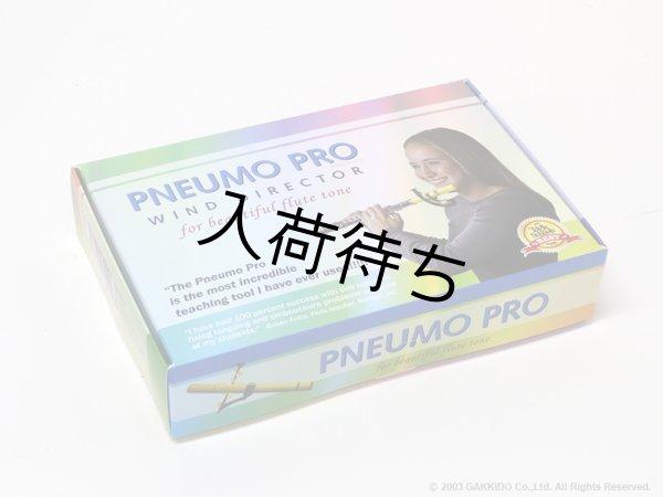 画像1: PNEUMO PRO フルート用練習ツール (1)