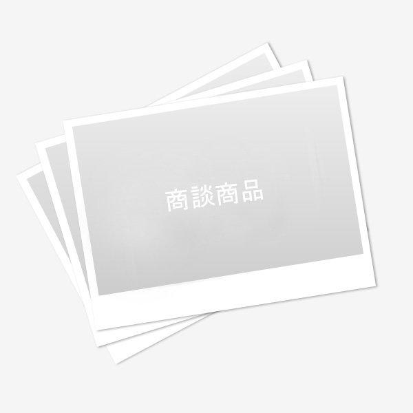 画像1: ご商談商品 #0000068584 (1)
